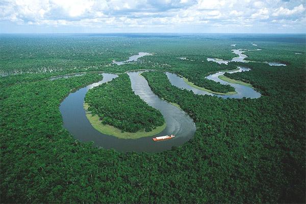 الأمازون 5