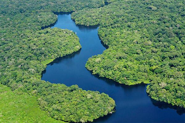 الأمازون 7