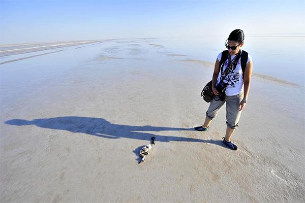 بحيرة الملح 1