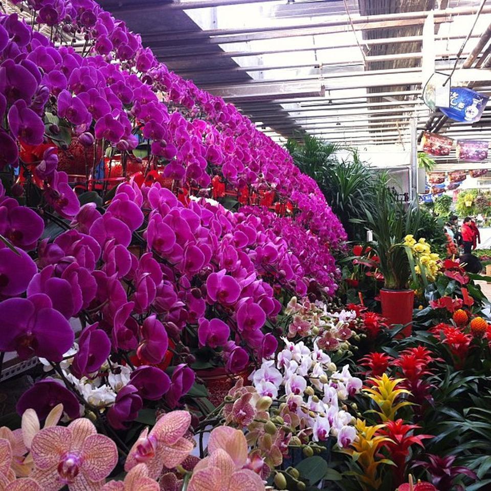 سوق الورود 1