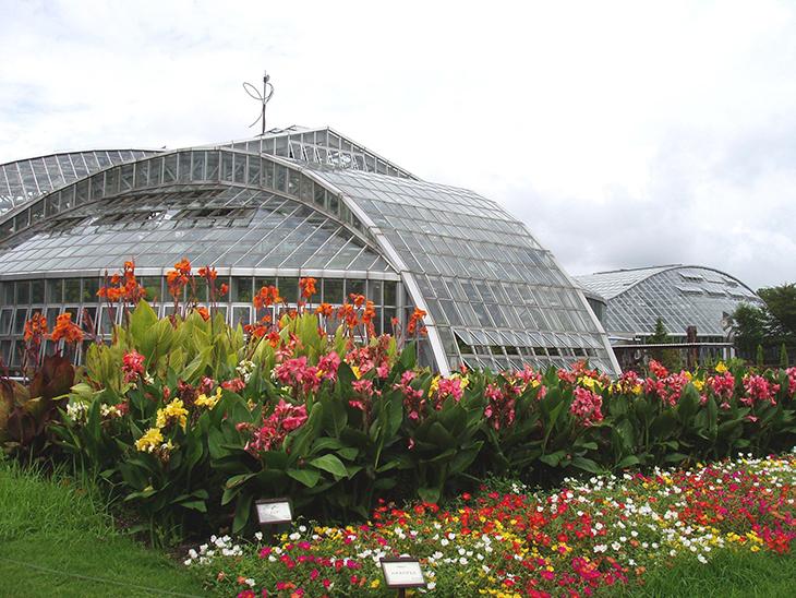 حديقة كيوتو النباتية