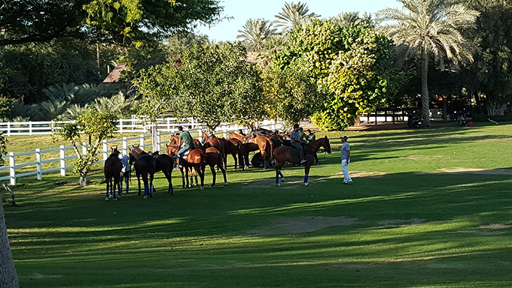 desert-palm-polo-club-8