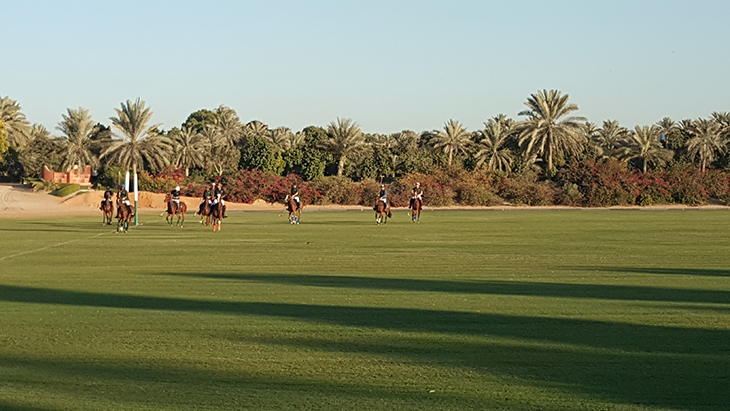 desert-palm-polo-club-9