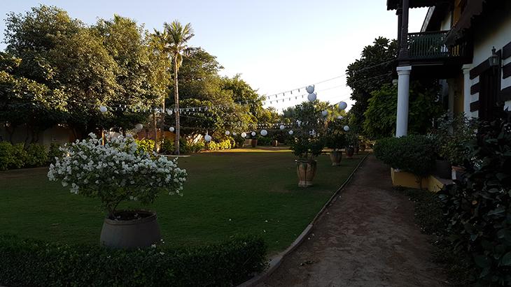 desert-palm-hotel-%d9%81%d9%86%d8%af%d9%82-%d8%af%d9%8a%d8%b2%d8%b1%d8%aa-%d8%a8%d8%a7%d9%84%d9%85-22