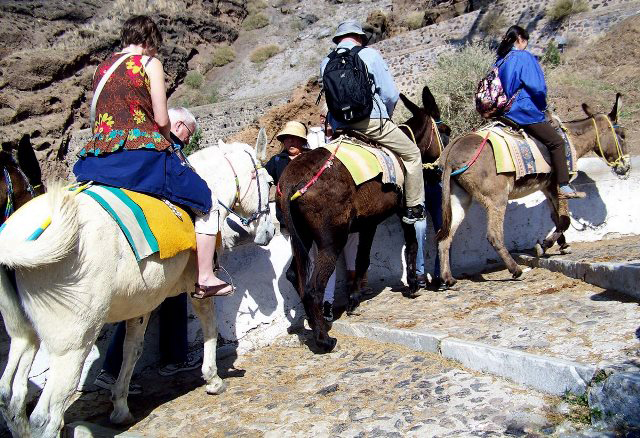 Santorini-3-people-donkey-ride