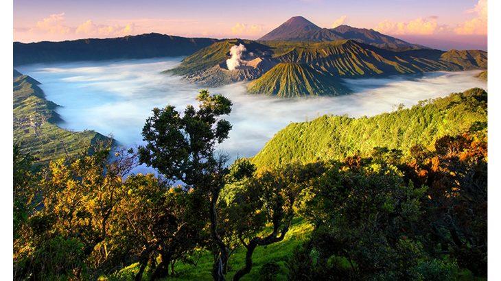 اندونيسيا (1)