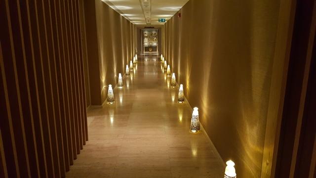 فندق شانغريلا البوسفور اسطنبول (26)