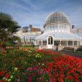 حدائق مدينة بلفاست