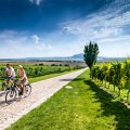 cyklo-South_Moravia