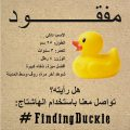 Finding Duckie (AR)