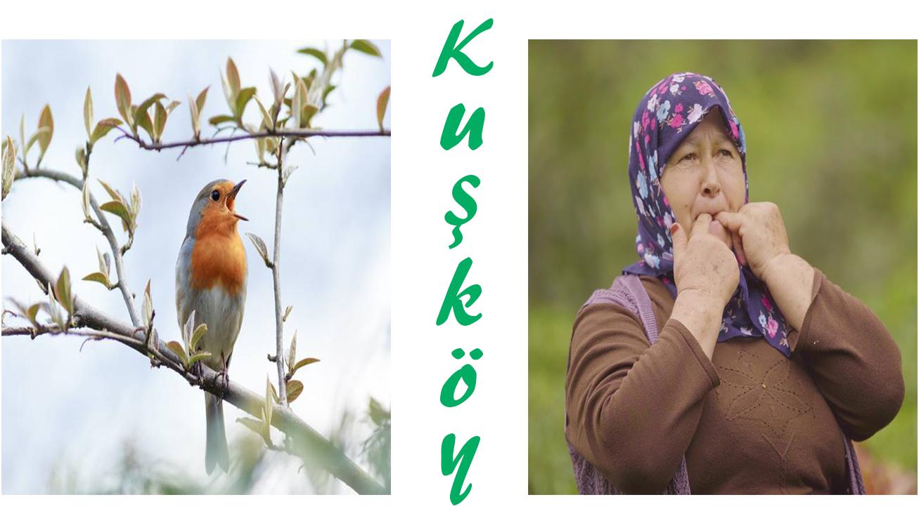 Kuşköy 4