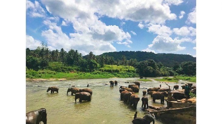 Rambukkana - Sri Lanka