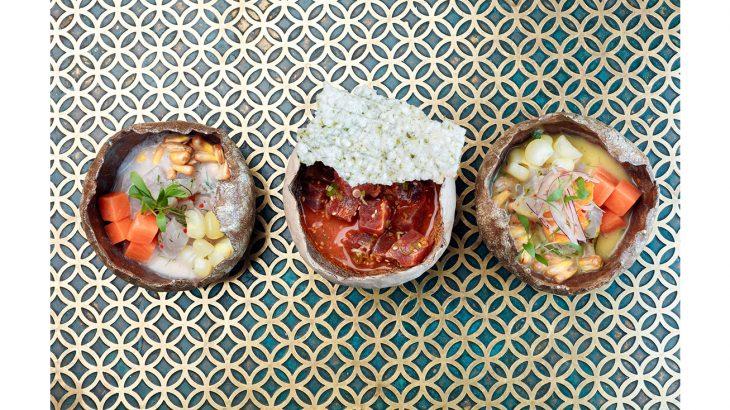 COYA Ceviche