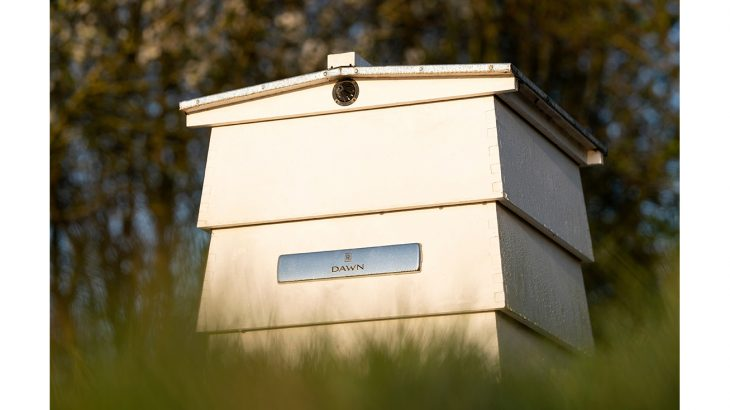 Bee Hive High Res
