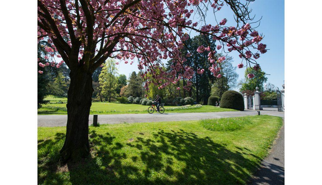Parc des Eaux-Vives - Vélo