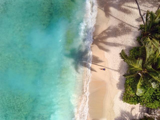 Beach_Grand_Anse_Guest_aerialh
